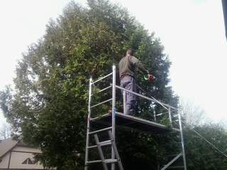 Kertgondozás, kertfenntartás Miskolcon és Borsod-Abaúj-Zemplén (BAZ) megyében